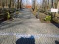 Cmentarz w Charkowie -fot.Jan Kania